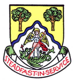 basingstoke and deane bc arms