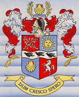 bromley bc arms