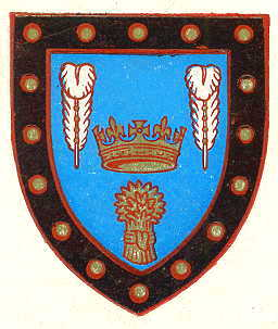 evesham tc arms