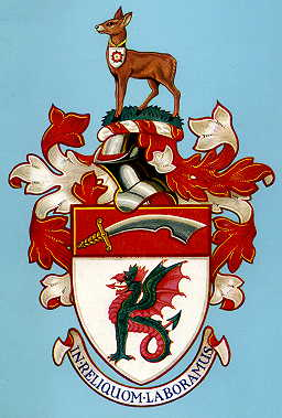 Civic Heraldry Of England And Wales East Anglia And