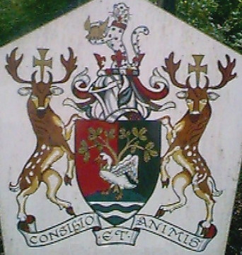 south buckinghamshire dc arms